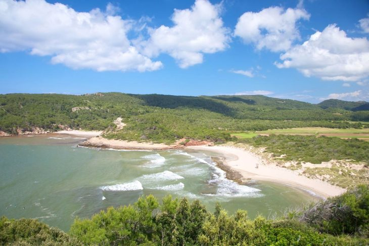 Algaiarens Menorca